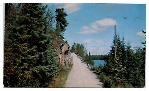 1954 Old Echo Trail, Superior National Forest, MN Postcard *5D