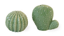 Prickly Cactus Southwest Green 3 x 3 Porcelain Salt and Pepper Shaker Set