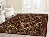 Oriental Area rug Traditional living room runner door mat