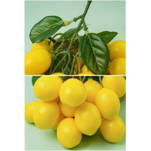 Artificial Lemon Branches with Green Leaves Artificial Lemon Decoration for Home