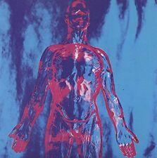 Nirvana - Sliver LP Vinile SUBPOP