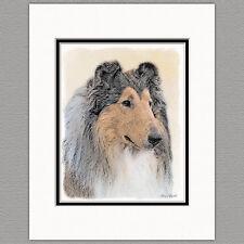 Collie Dog Original Art Print 8x10 Matted to 11x14
