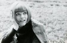 CLAUDIA CARDINALE 60s  VINTAGE PHOTO ORIGINAL #5 ANGELO FRONTONI
