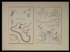 HOKUSAI, DEUX PAGES DE LA MANGUA - 1910 - JAPON,