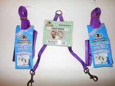 Sheppard & Greene Ferret - 2 Harness / Lead Sets+Tandem Coupler - Purple