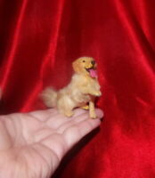 OOAK Golden Retriever dog Realistic Dollhouse 1:12 Handmade Miniature IGMA cat 2