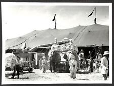 RINGLING BROS BARNUM & BAILEY CIRCUS ELEPHANT TENT GENE BAXTER PHOTO (196)
