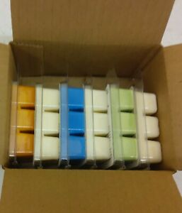 Wax melt gift set 6 Clean scents 100% Soy wax max scented Free Shipping