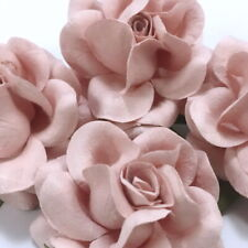 25 Blush Pink Paper Flowers Wedding Party Headpiece Home Decor Basket R77-122