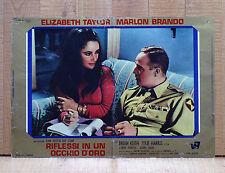 RIFLESSI IN UN OCCHIO D'ORO fotobusta poster Elizabeth Taylor Marlon Brando AN7