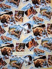 Animal Fabric - Grizzly Bear Raccoon Cabin Portraits - Elizabeth's Studio YARD