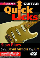 LICK LIBRARY Learn to Play QUICK LICKS DAVID GILMOUR Pink Floyd Blues GUITAR DVD