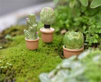 Miniature Green Plant In Pot For Dollhouse Furniture Decoration Home Decor FA