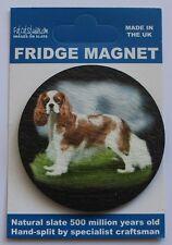 King Charles Spaniel - Dog - Fridge Magnet - Welsh Slate