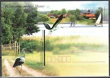 Poland 2006 -  Polish Beauty of the Earth - Fi.1396 -  postcard - unused