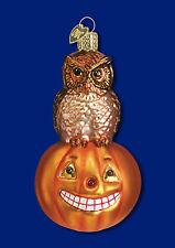 26005 Owl on Pumpkin Glass Ornament Old World Christmas Halloween Fall Autumn