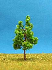 X18 Árboles 25 árboles de hoja caduca 5 cm NUEVO
