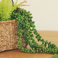 72cm Natural Garland Hanging Fake Artificial Plants String Succulent  Home*Decor