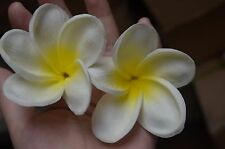 White Yellow Plumerias Cake Toppers Real Touch Flower Blooms Silk Wedding