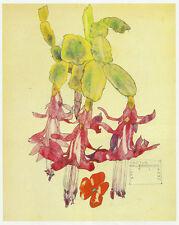 Cactus Flower, Walberswick Charles Rennie Mackintosh 10 x 12 ready mounted print