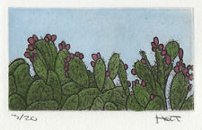 Hand colored cactus etching with water color and aquatint, Southwest art print