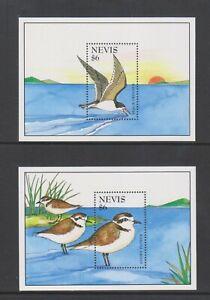 Nevis - 1995, Birds sheets x 2 - MNH - SG MS878