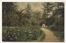 Rhododendron in Evergreen Park KANE PA Vintage McKean County Pennsylvania Postca