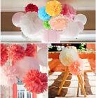 Tissue Paper Pom Poms Flower Ball Wedding Round Hanging Decoration Party