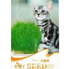 FD1063 Cat Grass Seed For Your Cat Food Pet Food Pet Grass Seed 1 Bag 200 Seed A