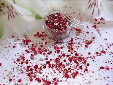Nail Art Chunky *Christmas* Silver Red Hexagon Glitter Spangle Mix Pot Art Tips