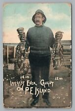 """""""14 Pound LOBSTER—Largest Ever"""" PRINCE EDWARD ISLAND Rare Antique Fishing 1910s"""