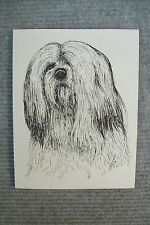 Lhasa Apso Pen and Ink Stationary Cards, Note Cards, Greeting Card.  10 pack.