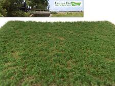 Lars op't Hof Spring Pasture Short Static Grass Mat Model Scenery 10.12.23 Ho