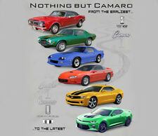 GM / Chevrolet Nothing But Camaro SILVER Adult T-shirt