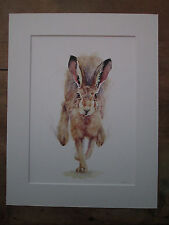 """Hare watercolour print  of original painting, in 18"""" x 14"""" Mount"""