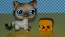 Littlest Pet Shop  Set  Shopkins+   LPS  5