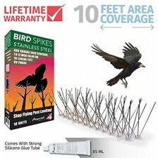 Long 10ft Stainless Steel Anti Pigeon Seagull Bird Spikes Deterrent Repellent