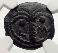 MARCUS AMBIBULUS Augustus Jerusalem Ancient 10AD BIBLICAL Roman Coin NGC i70855