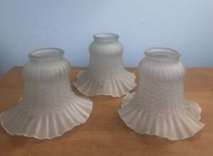 3pc Tulip Replacement Glass Frosted Shades for Wall Lights and Ceiling Fan