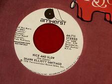 SHAWN ELLIOTT SANTIAGO~ NICE AND SLOW~ RARE PROMO~ SAME SONG DISCO ~ SOUL 45