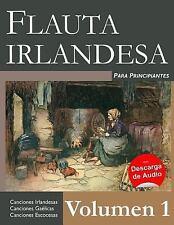 Flauta Irlandesa para Principiantes, Paperback by Ducke, Stephen, Like New Us...