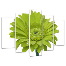 5 Panel Wall Art Lime Green Floral Canvas Pictures Living Room 5098