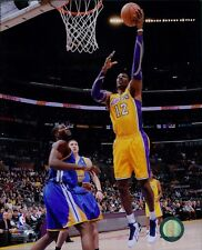 Dwight Howard Los Angeles Lakers Licensed NBA Unsigned Glossy 8x10 Photo A