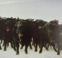 Vintage Art James Wyeth Angus 1974 Island Geese 1982 Goose Beach Cattle Cow Herd