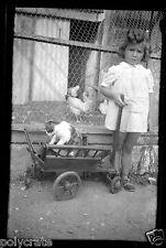 Portrait petite fille charrette chat & poule -  ancien négatif photo an. 1930 40