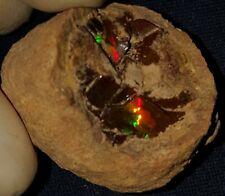 50.2 Carat Ethiopian Chocolate Shewa Rough Opal #2161009017