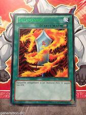 Carte YU GI OH SALAMANDRA DL15-FR013 TITRE VERT