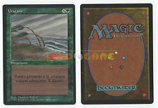 MTG MAGIC - Uragano - Hurricane - 1ª Edizione Italiana Revised FBB - 1994 - MINT