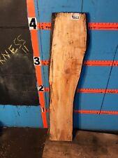 "#9662   2 1/4"" THICK  black line spalted maple live edge slab  mantel"