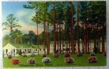 Linen Postcard Whispering Pines Motel Accomac Virginia #167